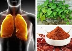 depurare polmoni e bronchi