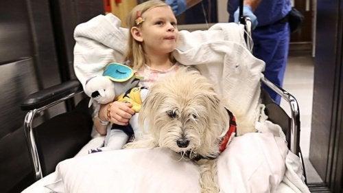 bambina in ospedale con il suo cane