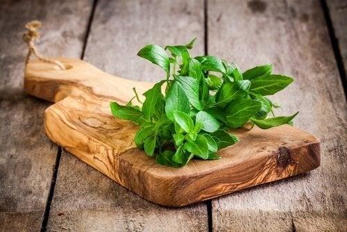 il basilico aiuta il fegato e i reni a eliminare le tossine accumulate nel corpo