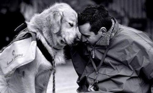 cane e uomo mahe