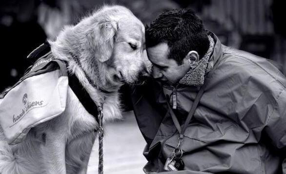 Un cane per combattere la nostalgia