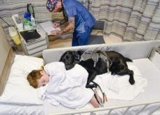 mahe sul letto di ospedale