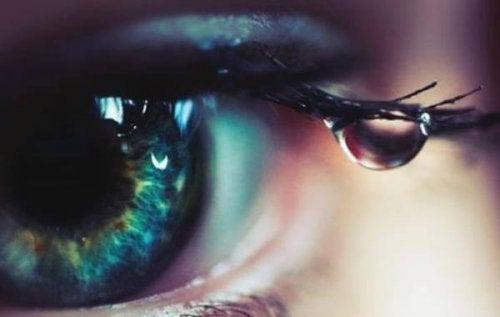 occhio con lacrima sulle ciglia sguardo