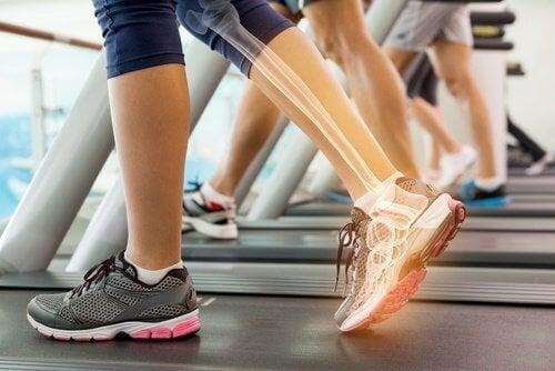 ossa e articolazioni-della-gamba intolleranza al glutine