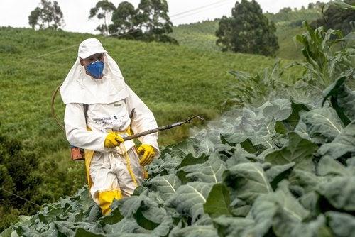 uomo che spruzza pesticidi
