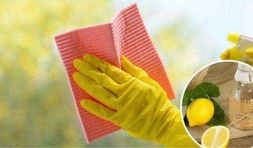 Vetri e finestre: trucchi per una pulizia impeccabile