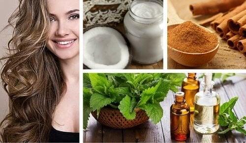 Unguento a base di cocco, menta e cannella per rigenerare i capelli