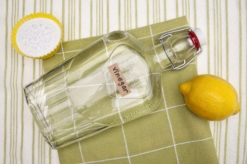 Aceto bianco e limone