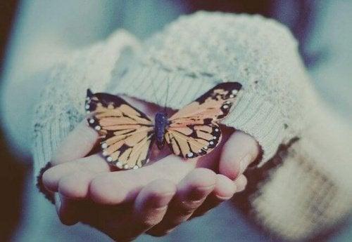 donna con farfalla tra le mani amare