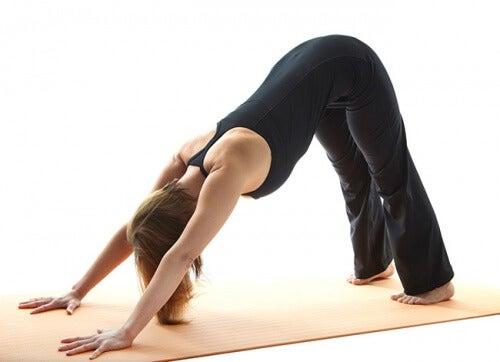 posizione yoga del cane mal di schiena
