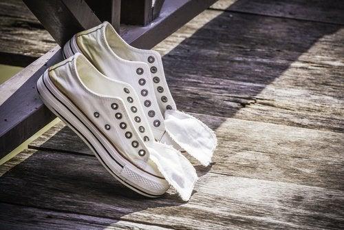 scarpe la cipolla
