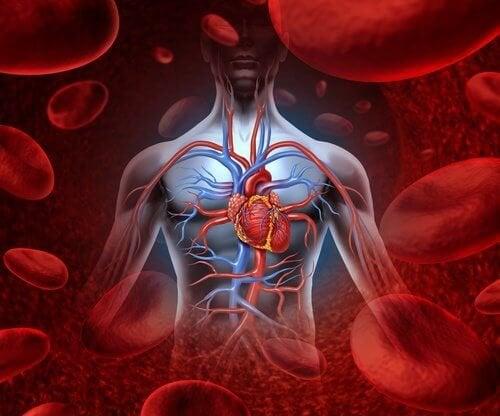 Benefici cardiovascolari bevanda lassativa