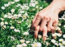 sesso Mano-intrecciate-sull'erba