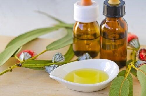 l'eucalipto è un ottimo rimedio contro l'irritazione polmonare
