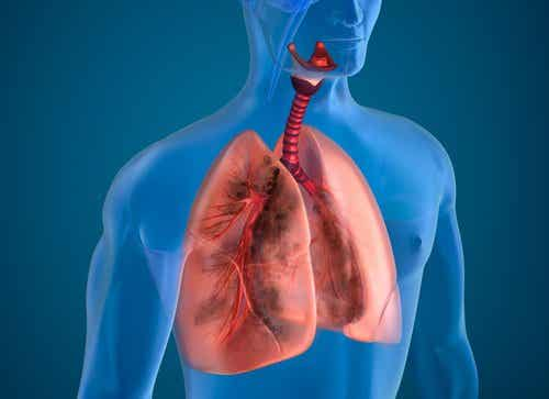 10 alimenti che aiutano i fumatori a depurare i polmoni