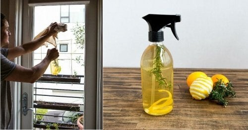 Profumo per ambienti con scorza di limone