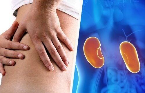 8 sintomi che ci avvisano di un malfunzionamento dei reni