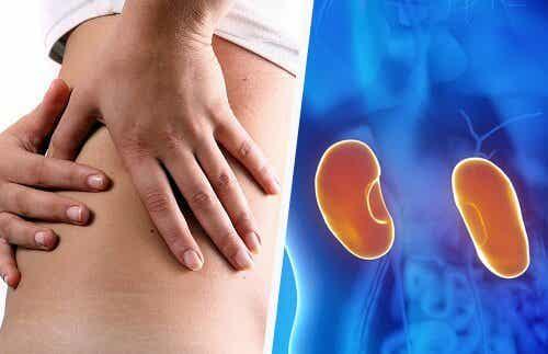 7 sintomi di una patologia ai reni