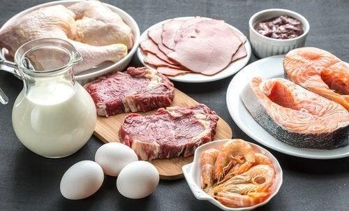 carne, pesce e brocca con il latte perdere peso