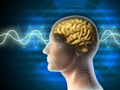 cervello onde elettromagnetiche wifi