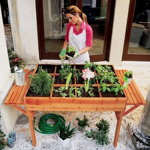 donna coltiva seguendo le fasi lunari