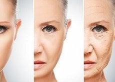 abitudini alimentari fasi della pelle del viso dalla giovinezza alla vecchiaia