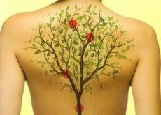 schiena con albero mal di schiena cronico