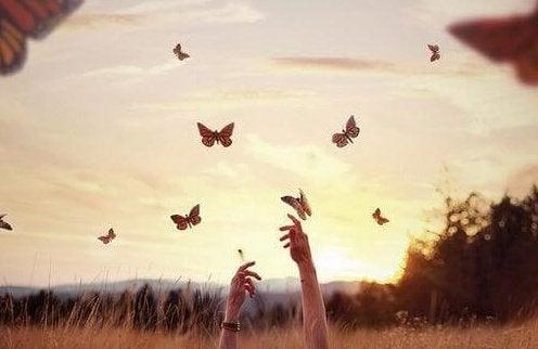mani che cercano di raggiungere farfalle che volano