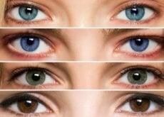 occhi di diverso colore