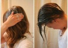 olio di cocco-capelli