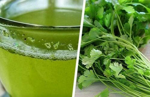 succo verde di prezzemolo