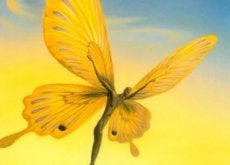 uomo-farfalla