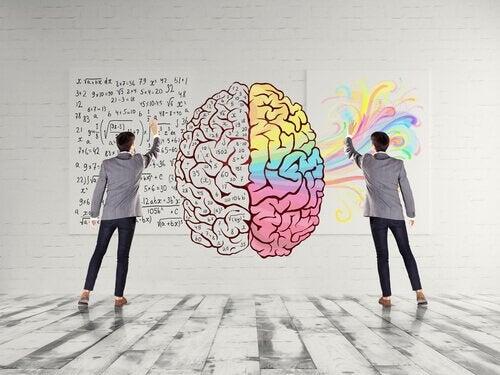 Cervello giovane formule e colori- attività fisica