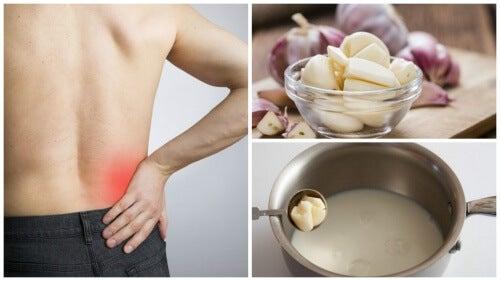 Latte all'aglio: rimedio infallibile contro la sciatica