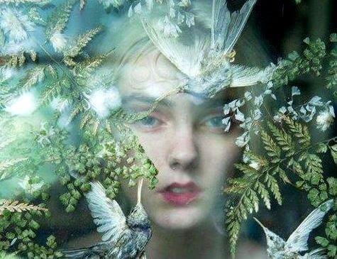 donna tra foglie e uccelli