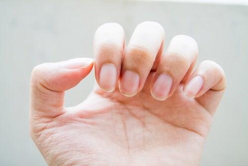 le unghie della mano