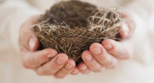 Sindrome del nido vuoto: in casa regna la solitudine