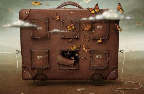 Valigia con farfalle