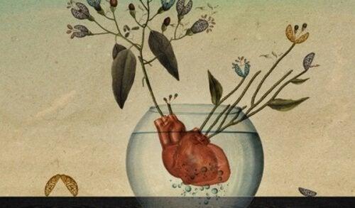cuore-in-un-vaso