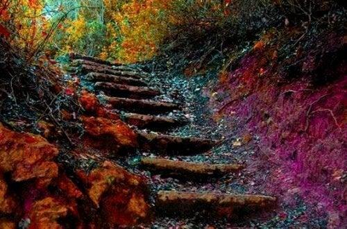 La scala della vita: come migliorare in 5 passi
