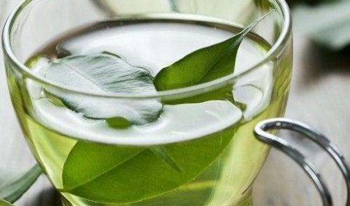 tazza di te verde