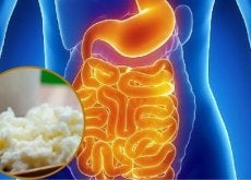 intestino-e-kefir flora intestinale