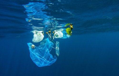 rifiuti-di-plastica-nel-mare