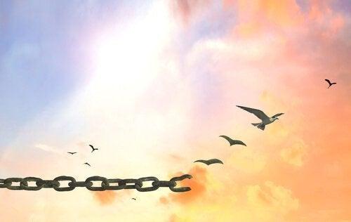 catena-di-uccelli
