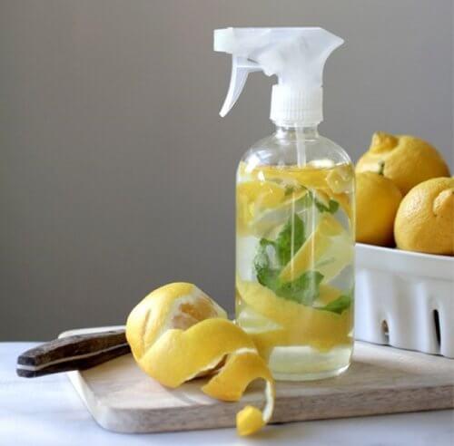 Acqua con scorza di limone in nebulizzatore