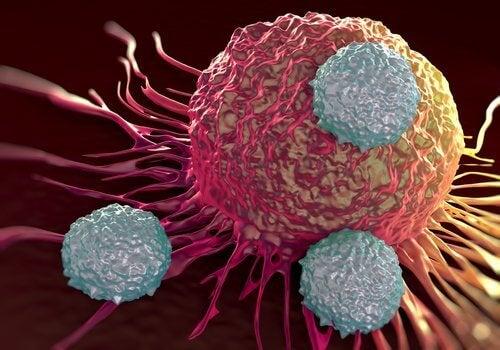 cellule-cancerogene