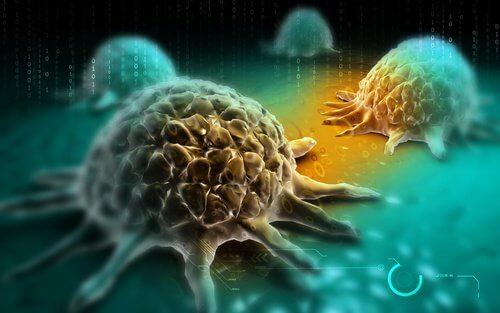 Sviluppo del cancro