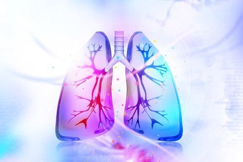 Quello che avverrà con un organismo se smettere di fumare subito