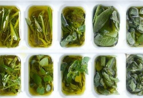 erbe-con-olio-pronte-per-essere-congelate