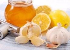 miele all'aglio e limone